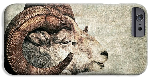 Fauna iPhone Cases - Horned iPhone Case by Priska Wettstein