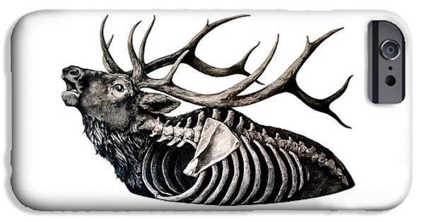 Photorealistic iPhone Cases - Horns Above Bones Within iPhone Case by Alexander M Petersen