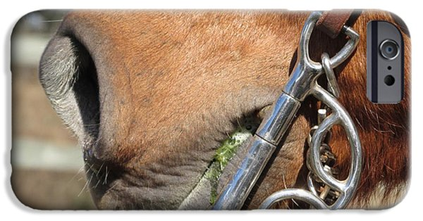 Horse Bit iPhone Cases - Horse Artsy  iPhone Case by Brittany Tuten