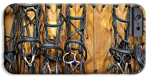 Tack iPhone Cases - Horse bridles hanging in stable iPhone Case by Elena Elisseeva