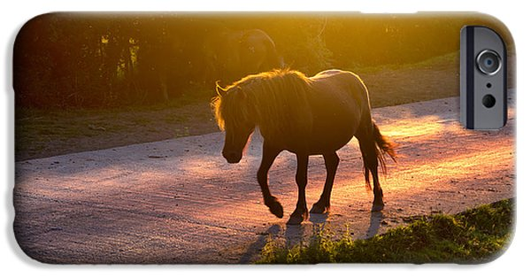 Sunset iPhone Cases - Horse Crossing The Road At Sunset iPhone Case by Mikel Martinez de Osaba