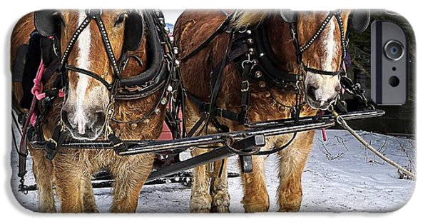 Pull iPhone Cases - Horse Drawn Sleigh iPhone Case by Edward Fielding