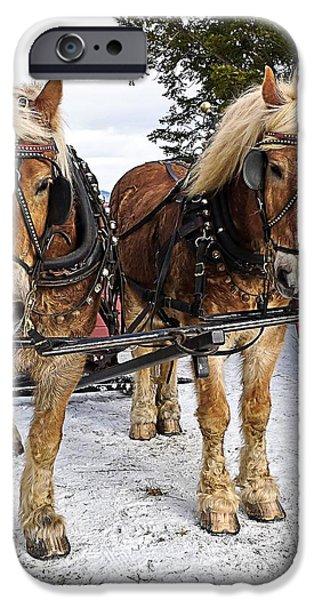 Horse Drawn Sleigh iPhone Case by Edward Fielding