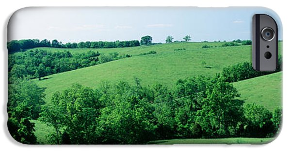 Meadow Photographs iPhone Cases - Horse Farm, Kentucky, Usa iPhone Case by Panoramic Images