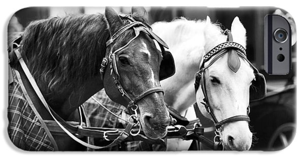 Horse And Buggy Photographs iPhone Cases - Horse Friends iPhone Case by John Rizzuto