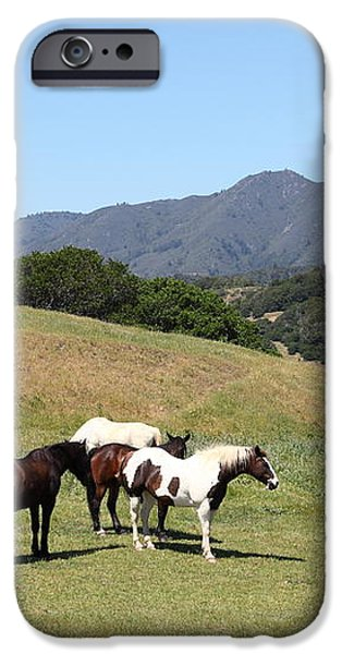 Horse Hill Mill Valley California 5D22672 iPhone Case by Wingsdomain Art and Photography