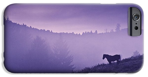Horses iPhone Cases - Horse in the mist iPhone Case by Yuri Santin