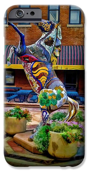 Fort Collins iPhone Cases - Horse of Another Color iPhone Case by Jon Burch Photography