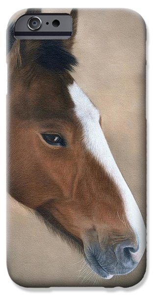 Horse Artist iPhone Cases - Horse Portrait Painting iPhone Case by Rachel Stribbling