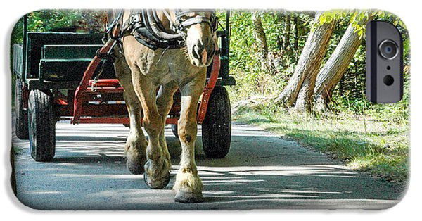 Horse iPhone Cases - Horse powered Mackinac Island iPhone Case by LeeAnn McLaneGoetz McLaneGoetzStudioLLCcom