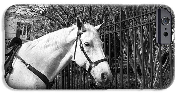 Law Enforcement Art iPhone Cases - Horse Profile mono iPhone Case by John Rizzuto