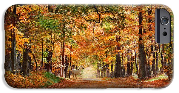 Fallen Leaves iPhone Cases - Horse Running Across Road In Fall Colors iPhone Case by Panoramic Images