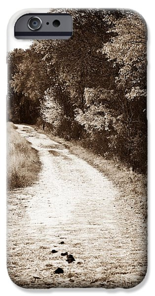 Horse Trail iPhone Case by John Rizzuto