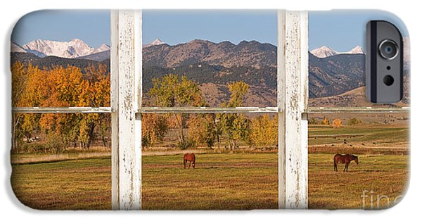 James Bo Insogna iPhone Cases - Horses and Autumn Colorado Front Range Picture Window View iPhone Case by James BO  Insogna