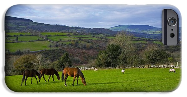 Horse iPhone Cases - Horses And Sheep In The Barrow Valley iPhone Case by Panoramic Images