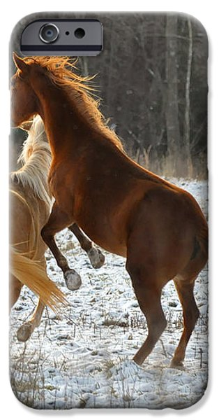 Horses at Play - 10Dec5690b iPhone Case by Paul Lyndon Phillips