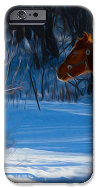 Horses at play iPhone Case by Tracy Winter