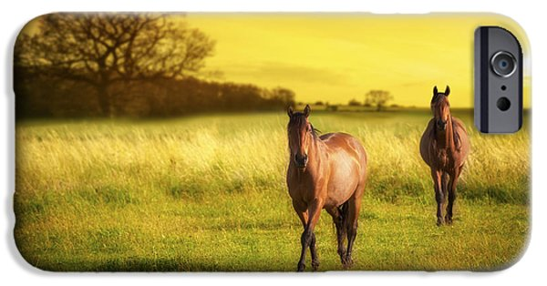 Horse iPhone Cases - Horses At Sunset iPhone Case by Amanda And Christopher Elwell