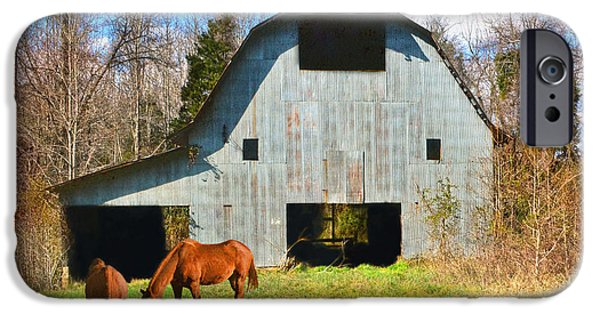 Old Barn iPhone Cases - Horses Call This Old Barn Home iPhone Case by Sandi OReilly