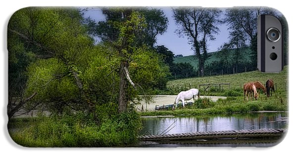 Animals Photographs iPhone Cases - Horses Grazing at Waters Edge iPhone Case by Tom Mc Nemar