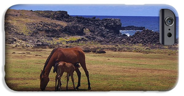Horse Pyrography iPhone Cases - Horses in Easter Island iPhone Case by Fernanda Caleffi Barbetta
