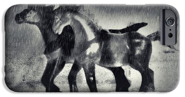 Monotone Digital iPhone Cases - Horses In Twilight iPhone Case by Jeff  Gettis