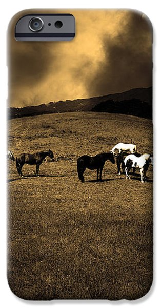 Horses of The Moon Mill Valley California 5D22673 sepia iPhone Case by Wingsdomain Art and Photography