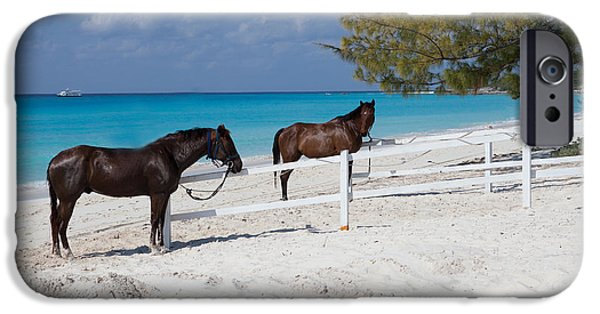 The Horse iPhone Cases - Horses on the Beach iPhone Case by Christopher McCartin