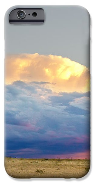 Horses On The Storm iPhone Case by James BO  Insogna