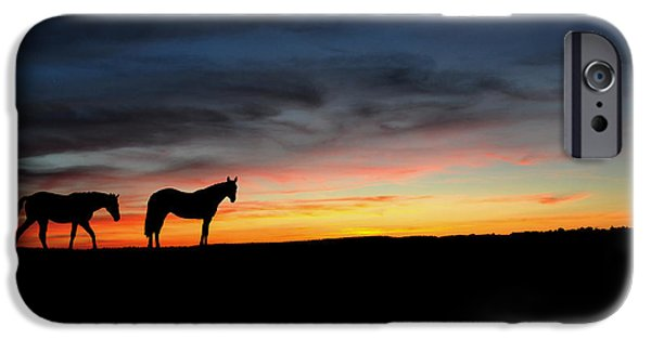 Farm Drawings iPhone Cases - Horses walking in the sunset iPhone Case by Aged Pixel