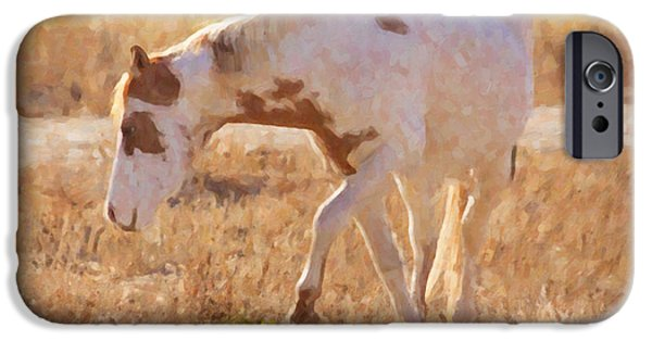 Wild Animals iPhone Cases - Horsing Around iPhone Case by Janice Rae Pariza