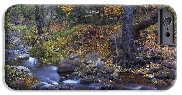 Oak Creek iPhone Cases - Horton Creek Autumn iPhone Case by Peter Coskun