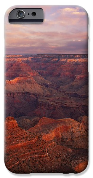 Peter Coskun iPhone Cases - Hot and Cold iPhone Case by Peter Coskun