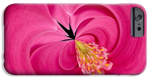 Nature Study iPhone Cases - Hot Pink and Round iPhone Case by Anne Gilbert