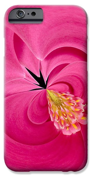 Hot Pink and Round iPhone Case by Anne Gilbert