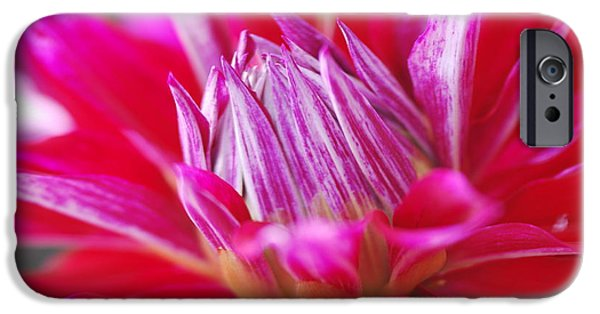 Floral Photographs iPhone Cases - Hot Pink iPhone Case by Collene  Swenson