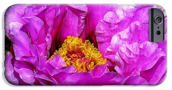 Floral Digital Art Digital Art iPhone Cases - Hot-pink Flower iPhone Case by Lilia D