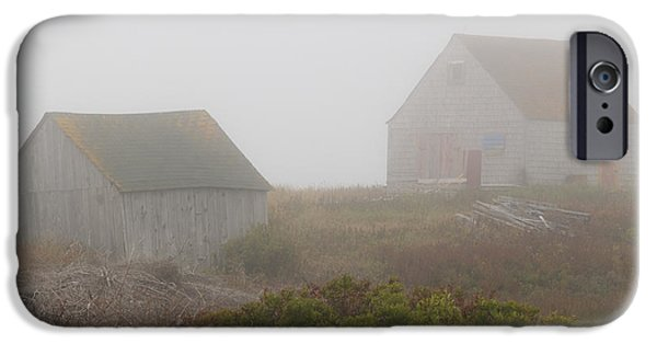 Fog Mist iPhone Cases - House Guests iPhone Case by Mike Taylor