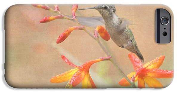 Small iPhone Cases - Hovering in the Crocosmia iPhone Case by Angie Vogel