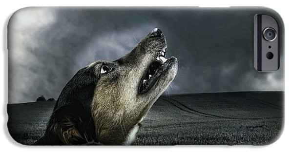 Growling iPhone Cases - Howling at the Moon iPhone Case by Mountain Dreams