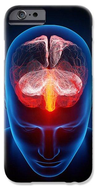 Human brain iPhone Case by Johan Swanepoel
