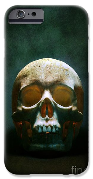 Jaws iPhone Cases - Human Skull iPhone Case by Carlos Caetano