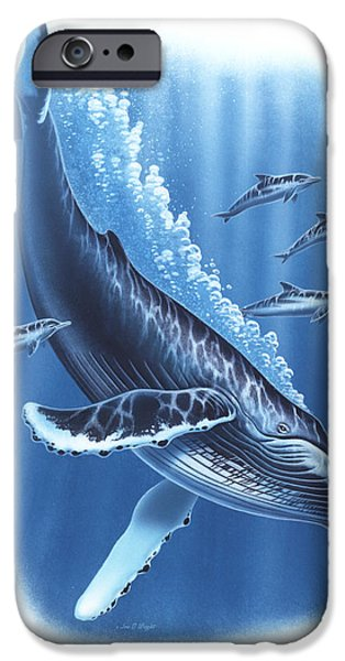 Ocean Mammals iPhone Cases - Humback and Dolphins iPhone Case by JQ Licensing