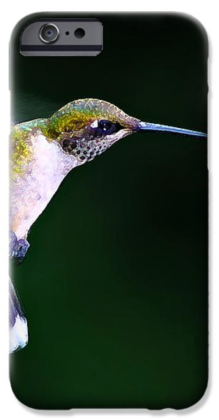 Hummer Ballet 2 iPhone Case by Bill Caldwell -        ABeautifulSky Photography