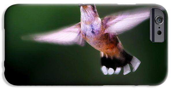 Animals Photographs iPhone Cases - Hummer Ballet 3 iPhone Case by Bill Caldwell -        ABeautifulSky Photography