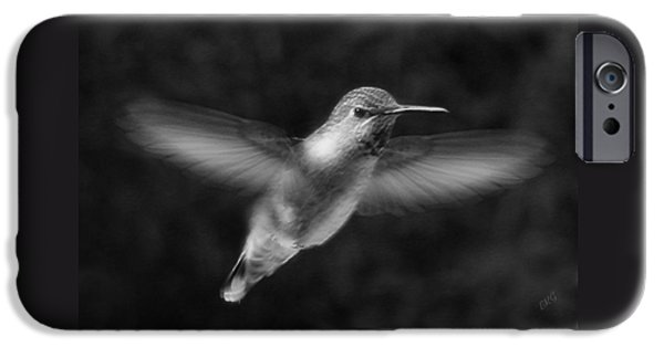 Monotone iPhone Cases - Hummingbird iPhone Case by Ben and Raisa Gertsberg
