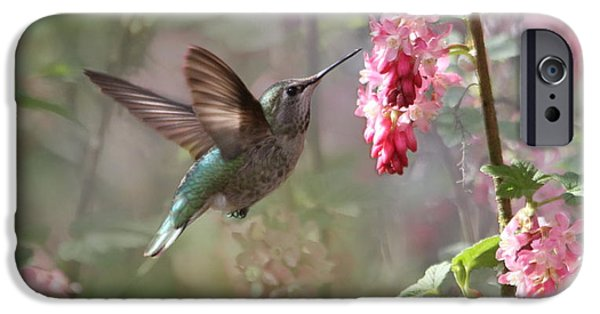 Hovering iPhone Cases - Hummingbird Heaven iPhone Case by Angie Vogel