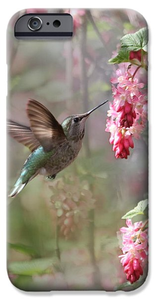 Hummingbird Heaven iPhone Case by Angie Vogel