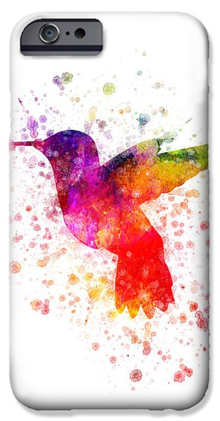Hummingbird iPhone Cases - Hummingbird in color iPhone Case by Aged Pixel