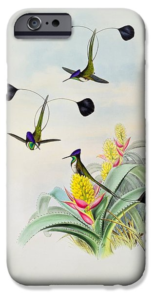 Animals Drawings iPhone Cases - Hummingbird iPhone Case by John Gould